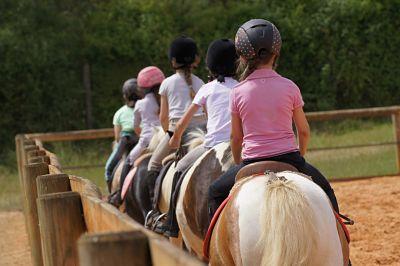 Centre Equestre Ecurie Billy