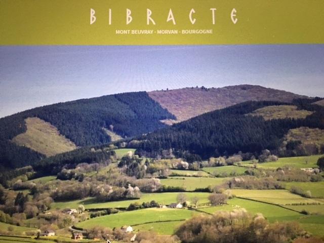 Bibracte